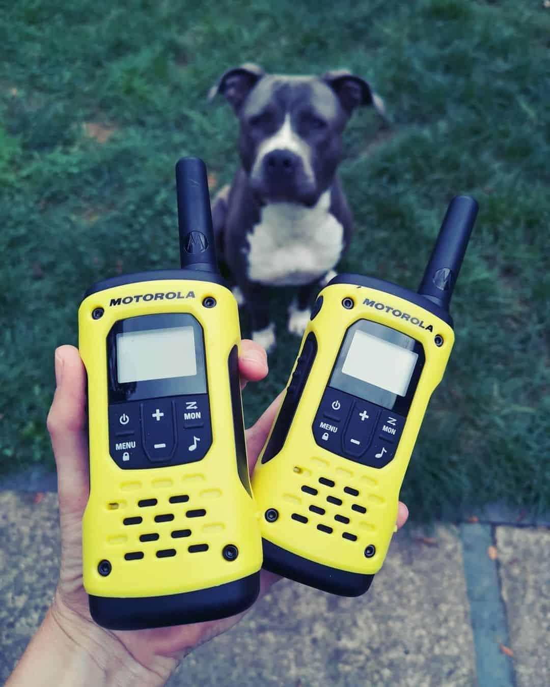 top rated walkie talkies